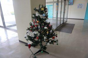 クリスマスツリーを設置しました。